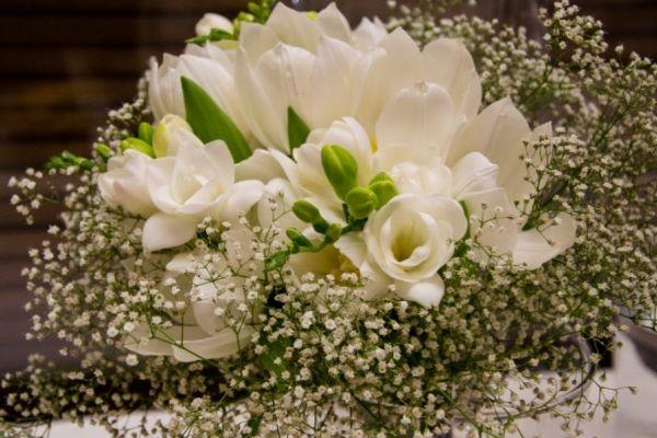 kvety-2-150B918E5-D501-3216-8CD9-21E108A25C53.jpg