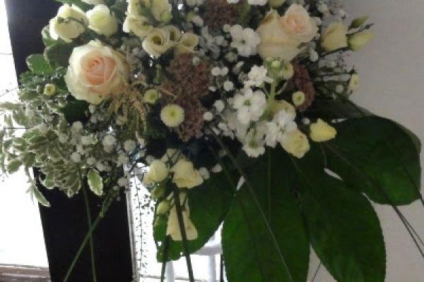 kvety113955964-85D6-8265-6835-EFE9D9579CD2.jpg